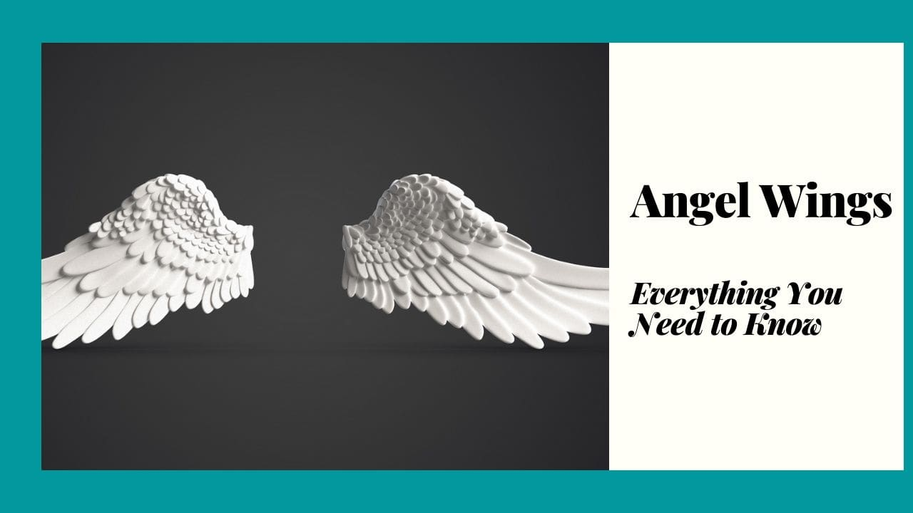Angel Wings Meaning, Folklore and Symbolism