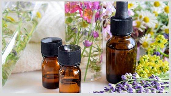 Significance of Essential Oils