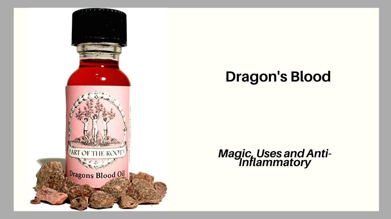 Dragons Blood Magic, Uses and Rituals