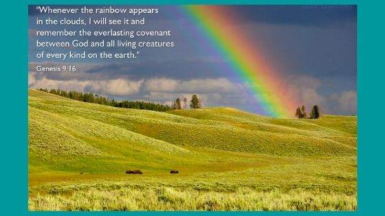 Genesis 9 NIV Version in the Bible