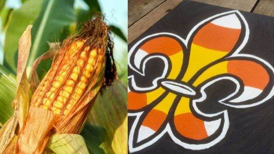 Is Fleur-de-lis a spiritual representation of Corn