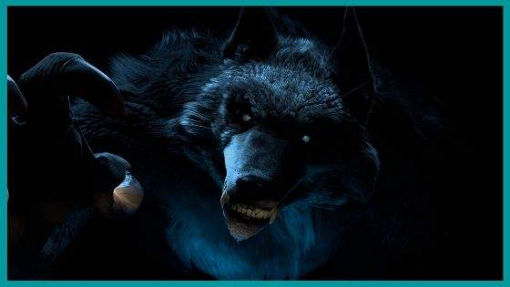 Popular Misconceptions about Amarok Wolf