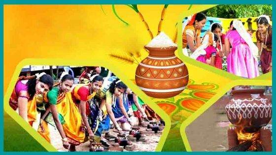 What is the Significance of Pongal?