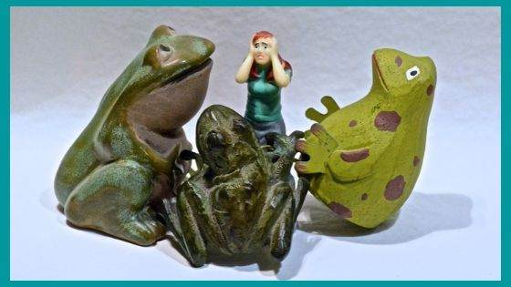 What is the reason behind people having fear of frogs?