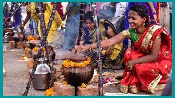 Why is the Pongal Festival So Important for Tamils in Particular?