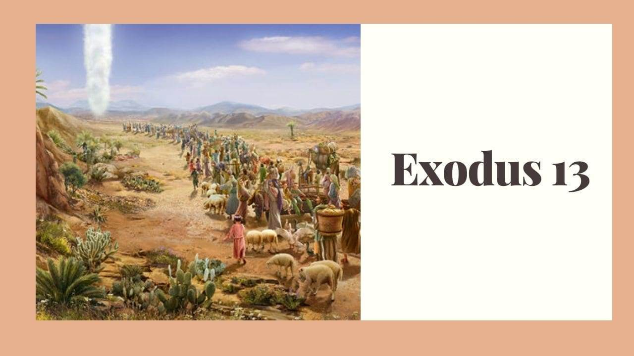 Exodus 13 (Consecration of the Firstborn) – WikiReligions