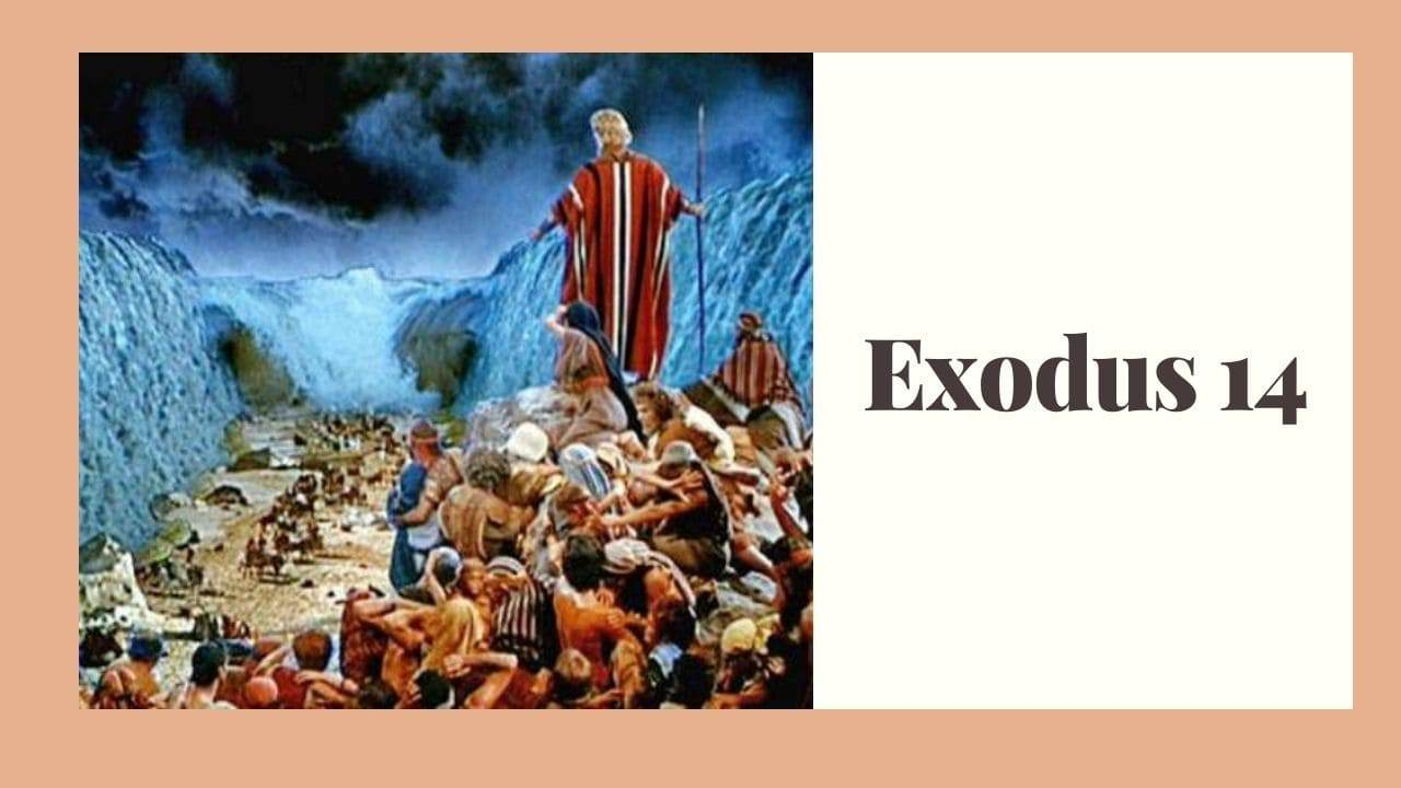 Exodus 14 (Crossing the Red Sea) – WikiReligions