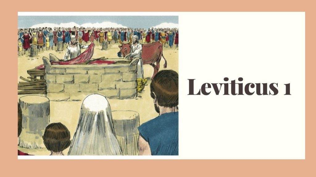 Leviticus 1 (The Burnt Offering) – WikiReligions