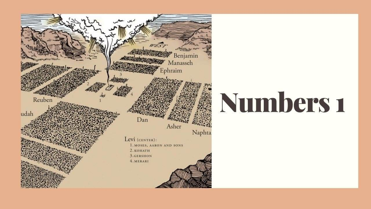 Numbers 1 (The Census) – WikiReligions